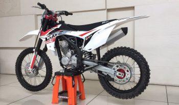 GX 250 completo